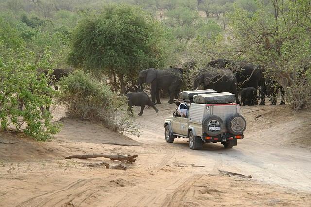 FOTO: Marek Šebek zažil v Afrike divočinu aj romantiku